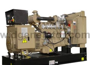 C-générateur diesel Cummins 275kVA220kw