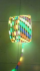 Yaye 18 Melhor vender IP65 Faixa de LED verde claro / Luz de LED à prova de água com 2 anos de garantia
