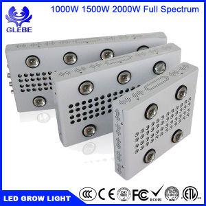 2000W luz crescer LED Full Spectrum para plantas de interior e Veg Flower