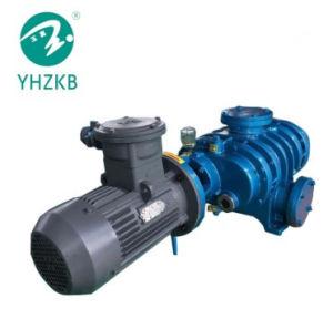 식품 산업을%s Zjb-300 루트 진공 펌프