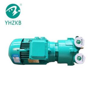 Sk-2une usine de fabricants de gros de la pompe à vide électrique