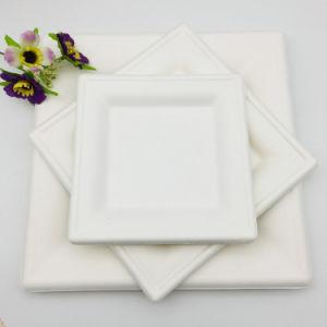 100% biodégradable Microwavable plaque carrée de pâte de canne à sucre