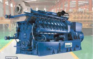 10-1000kw 제조자 최고 가격 Biogas 엔진 발전기
