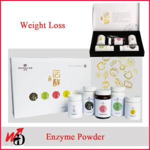 바디 음식 효소 분말 효소를 체중을 줄이는 체중 감소
