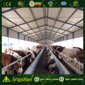 Конструкция фермы крупного рогатого скота (L-S-055)