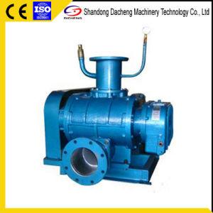 공기 압축기 (진공 펌프)가 Dsr80V에 의하여 뿌리박는다