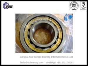 OEM латунные каркас цилиндрический роликовый подшипник Nu2322em