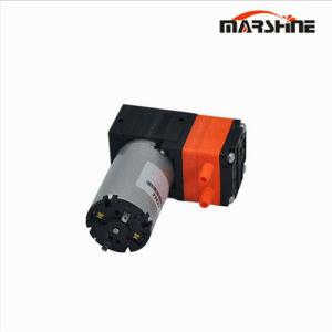 Pompa ad acqua miniatura dell'inchiostro della spazzola di alto flusso del diaframma della Singolo-Testa del diaframma di CC