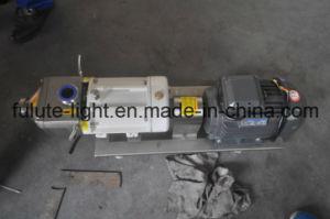 Edelstahl-Stärkesirup-Transport-Pumpe