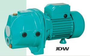 JETDP/ JDW Maison Self-Priming pompe à jet (JDW-225)