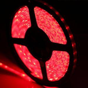 CE/RoHS/FCC/3 años de garantía de las luces de Cinta de LED flexible