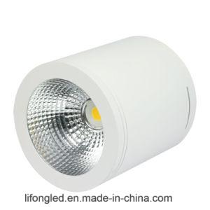 A superfície de alumínio do diodo emissor de luz Downlight do CREE 30W do corpo da lâmpada do cilindro montou