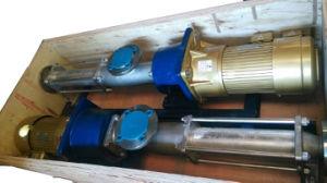 G 단청 구조 단 하나 회전자 음식 급료 나선식 펌프