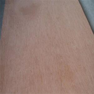 Pappel-Kern Bintangor Hartholz-Marinebirken-Möbel-Melamin-Gesichts-Okoume furniertes Handelsfurnierholz