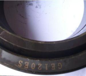 Hohe Presicion Geräten-Teile, gemeinsame Peilungen SKF (GE60)