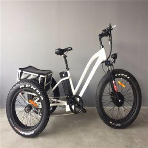 3つの車輪の電気Trikeの熱い販売のバイク、Trikeのオートバイ