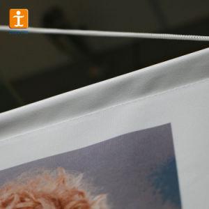 壁掛けスクロール旗、旗、紫外線デジタル印刷の旗を広告する屋外の壁