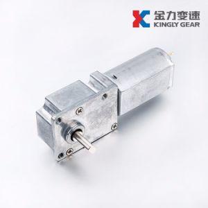 25mm 12V 800rpm 소형 DC 기어 모터