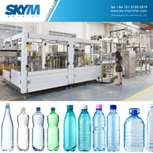 600mlびんの飲み物水満ちる生産機械プラント