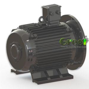 I RPM bassi Dirigere-Guidano il generatore sincrono a magnete permanente senza spazzola 150rpm, 200rpm, 300rpm