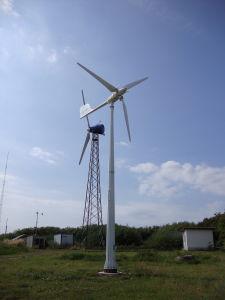 WS Motor Windmill Turbine Generator mit CER Certificate