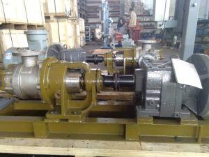 Nyp30 da Bomba de Óleo de Engrenagem de aço inoxidável