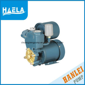 Pompa ad acqua autoadescante di superficie elettrica automatica Gp125/PS130 (0.5HP)