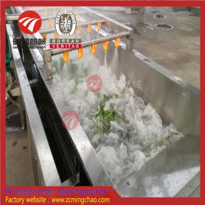 Maquinaria de procesamiento de alimentos /el lavado de verduras, cortar la línea de procesamiento de embalaje