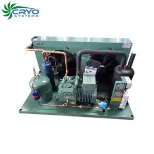 3HP 5HP 6HP 10HP Bitzer Compressor arrefecido a ar Pé na unidade de refrigeração 3 Ton a unidade do condensador de ar da unidade de condensação