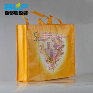 새로운 디자인 Eco-Friendly 비 길쌈된 부대 /Shopping 부대 (BLF-NW182)