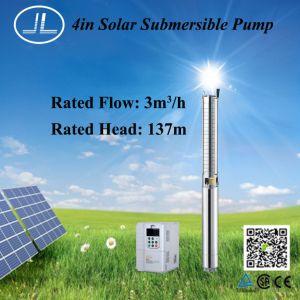 het ZonneSysteem Met duikvermogen van de Pomp 2.2kw 4inch, de Pomp van de Irrigatie