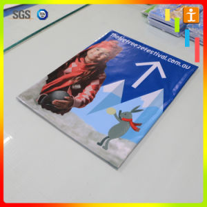 Promotion (TJpH01)のための卸し売りPVC Advertizing Banner