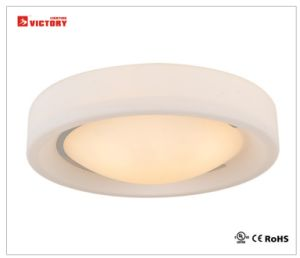 LEDの2years保証が付いている現代省エネの天井灯ランプ