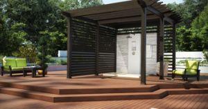 Le WPC de panneaux muraux de plein air, le bois comme (156S21)