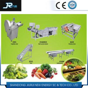 Ligne de traitement de séchage de légumes feuillus