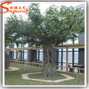 China alimentação artificial de plástico Live Banyan Ficus Árvore da fábrica