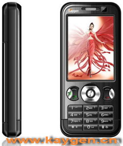 Vierling-band GSM +CDMA Mobiele TV (K888c)