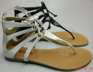Les femmes sandales (3188)