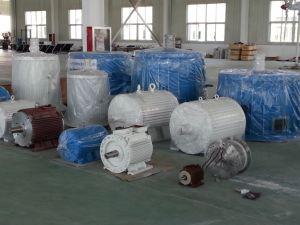 Ffl-20kw/150rpm/AC400Vの永久マグネット交流発電機(PMG/PMA/Hydro)