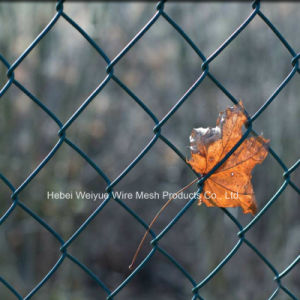 معدن [شين لينك] أمن [وير مش] حديد سياج [هوت-ديب] يغلفن