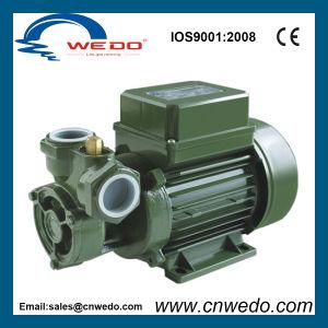 Elektrische Pumpe des Wasser-Kf-1 für Trinkwasser (0.37kw/0.5HP)