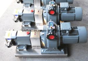 Lóbulo Rotor sanitarias de la bomba (BLS)