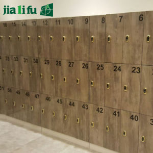 Gelamineerde Kast van de Hoge druk van Jialifu de Waterdichte