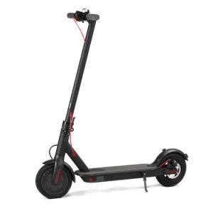 Elevador de duas rodas Ecorider Kick Scooter Scooter dobrável