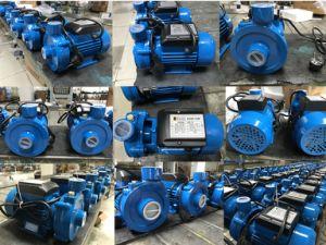 1.5dkm-20国内電気遠心ポンプ、水ポンプ(0.75KW/1HP)