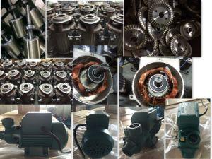 高品質国内周辺電気水ポンプQbシリーズ