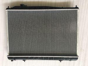 Auto del radiador con el número de dpi