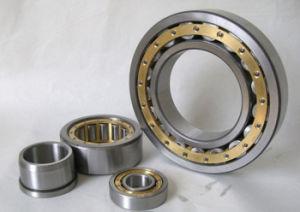 Les fournisseurs d'usine de haute qualité de roulement à rouleaux cylindriques Nu2330e