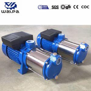 Prix compétitif centrifuge horizontale Nettoyer la pompe à eau électrique
