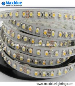 Temperatura de color ajustable de doble Color Cw+WW/LED de 120m de TIRA DE LEDS